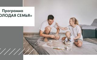 Какие есть программы поддержки для молодых семей
