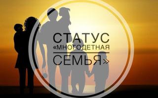 Как получить статус многодетной семьи в Москве